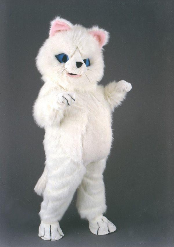 mascota pisica alba