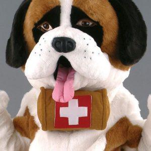 Mascota caine Saint Bernard