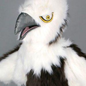 mascota vultur