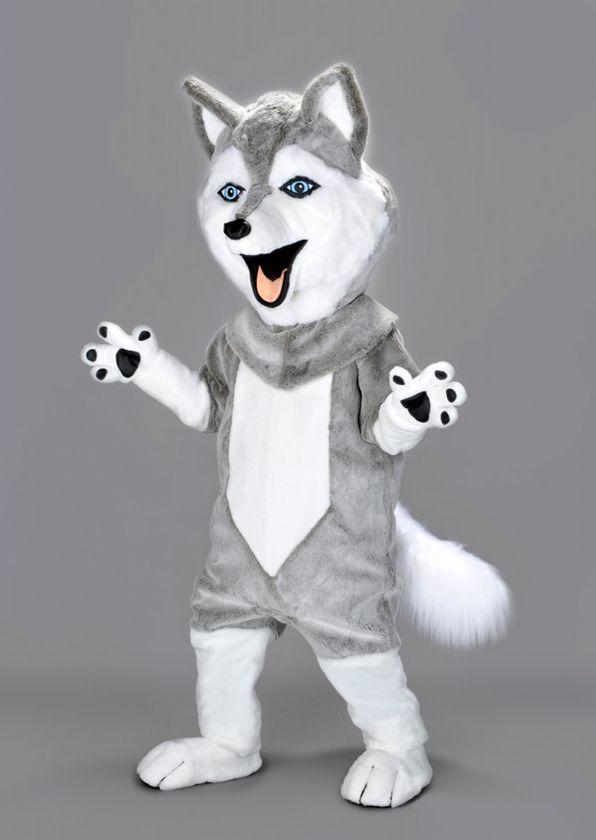 Mascota caine husky