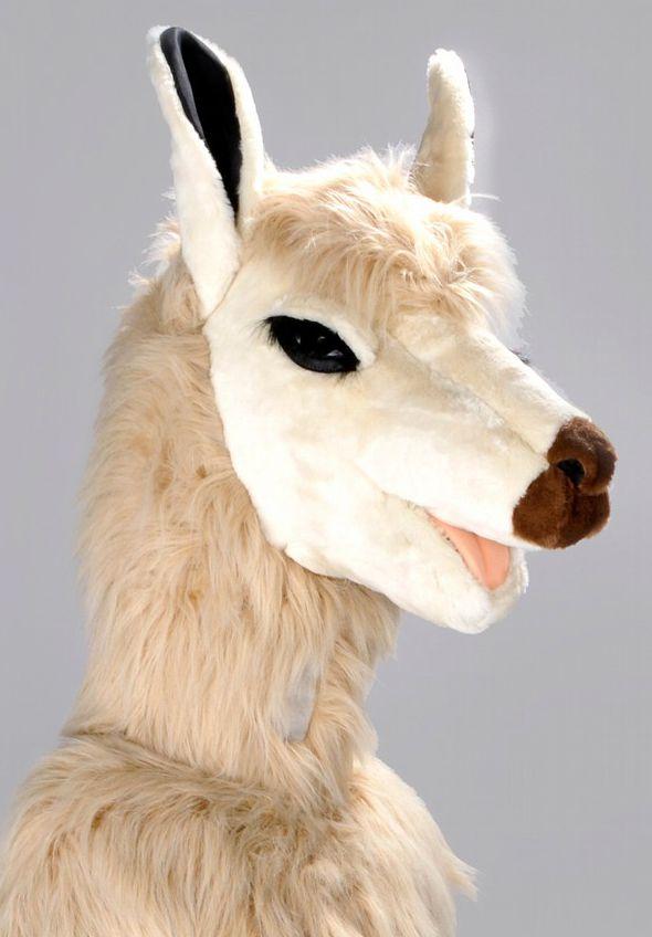 Mascota lama