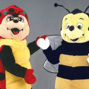 Insecte
