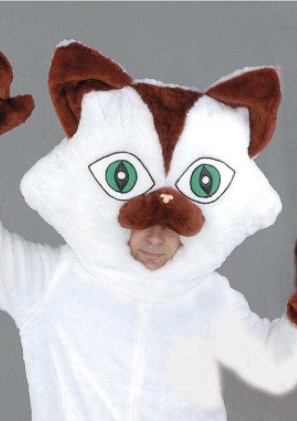 Mascota Pisica