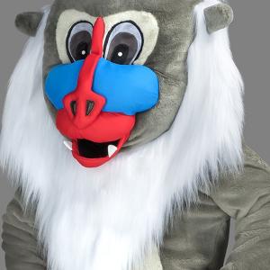 Mascota maimuta (babuin)
