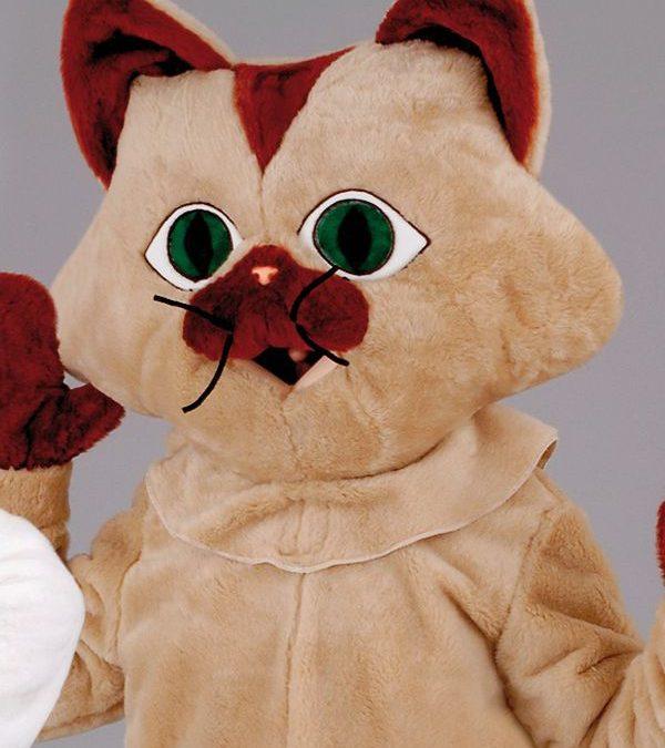 Pisica-cod 0033